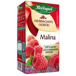 HERBAPOL HERBATA MALINA 20*3G